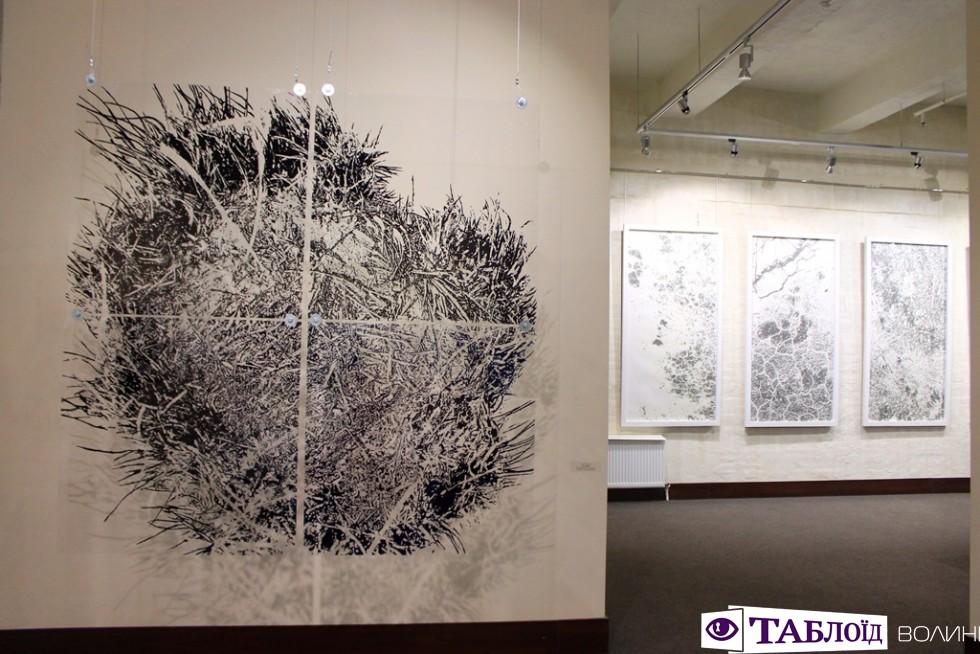 У Музеї сучасного українського мистецтва Корсаківпрезентували виставку київської художниціАнни Миронової.