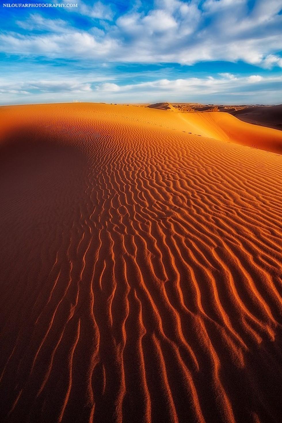 Хвилястий шлях. Фото: Niloufar Hosein zadeh