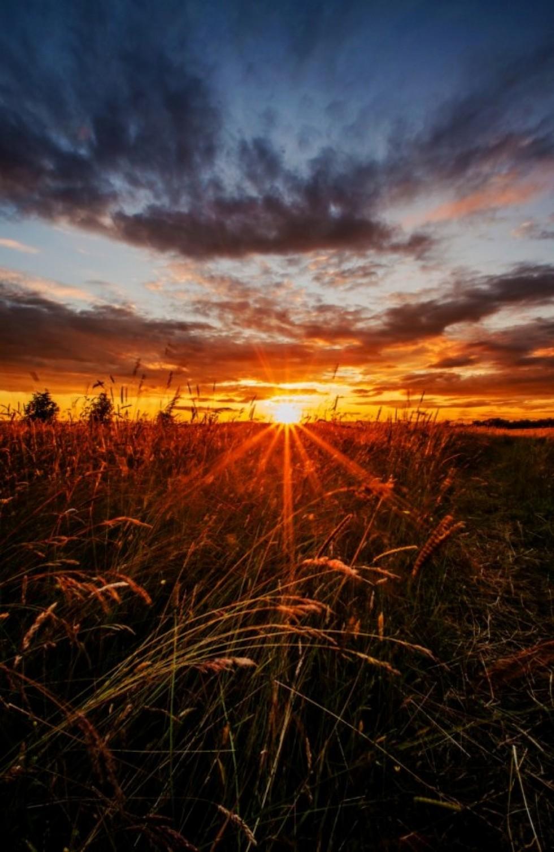 Сонце. Фото: Катерина Фолпрехтова
