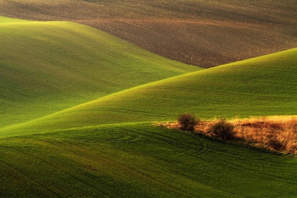 Моравський пейзаж. Фото: Радек Севера