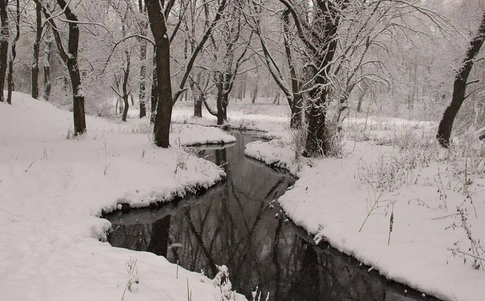 Зимовий струмок