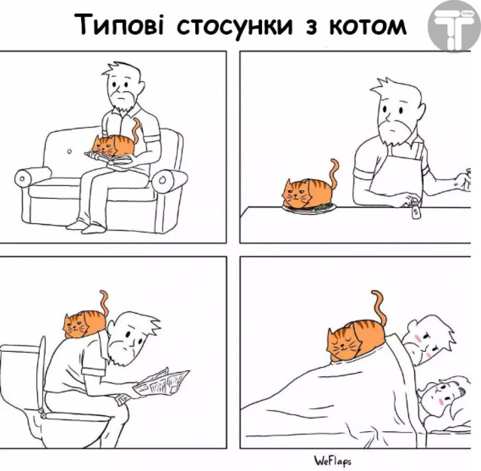 Життя з котом буває веселим