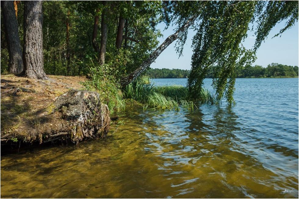 Озеро села Глухи