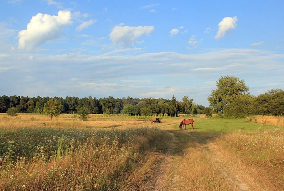 Волинь на світлинах Сергія Палька