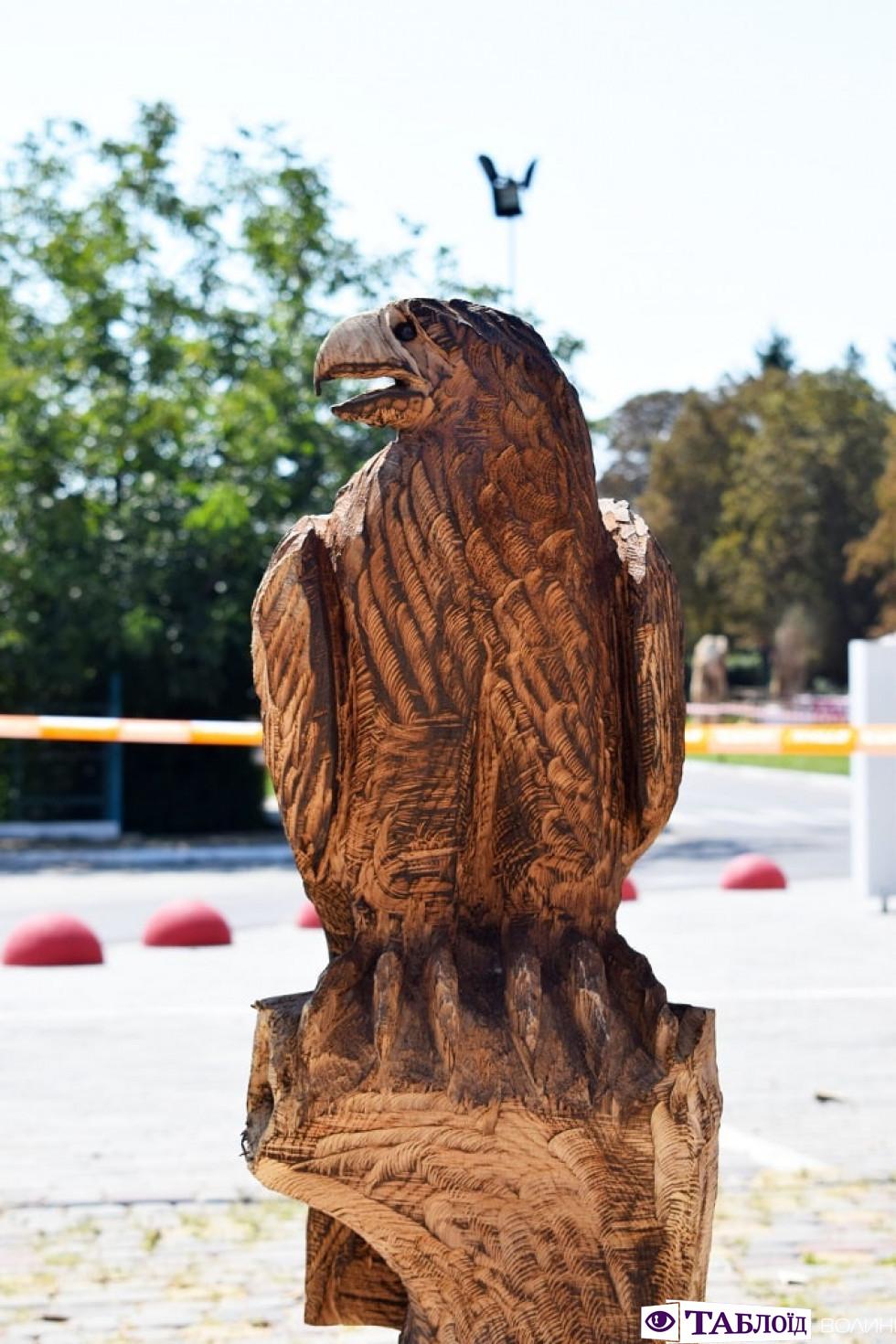 Орел, якого створив Бернд Вінтер