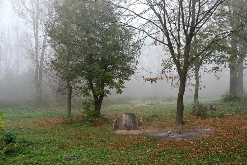 Туман у Рожищі