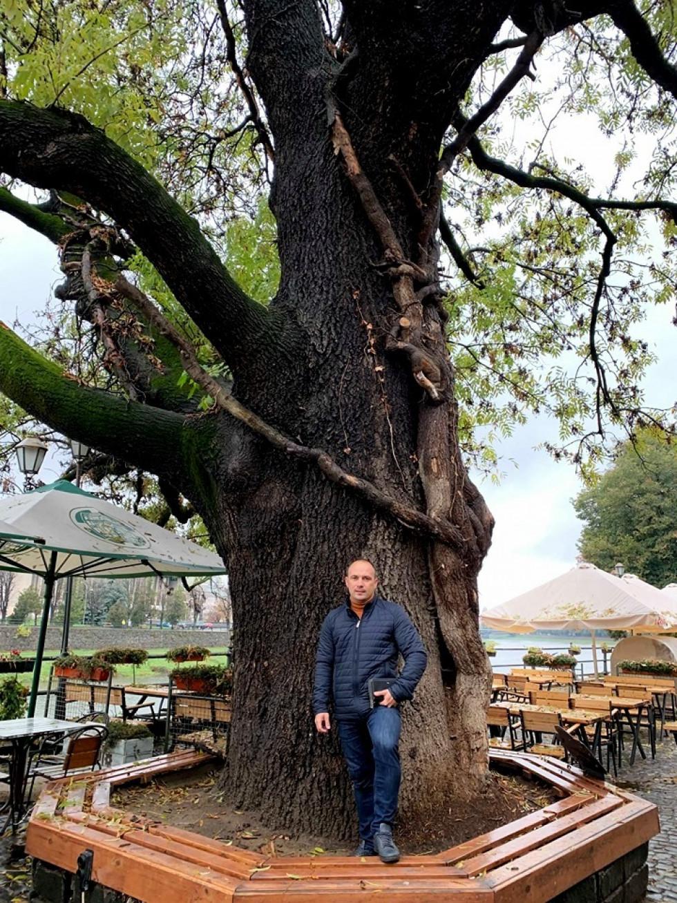Роман Романюк і дерево