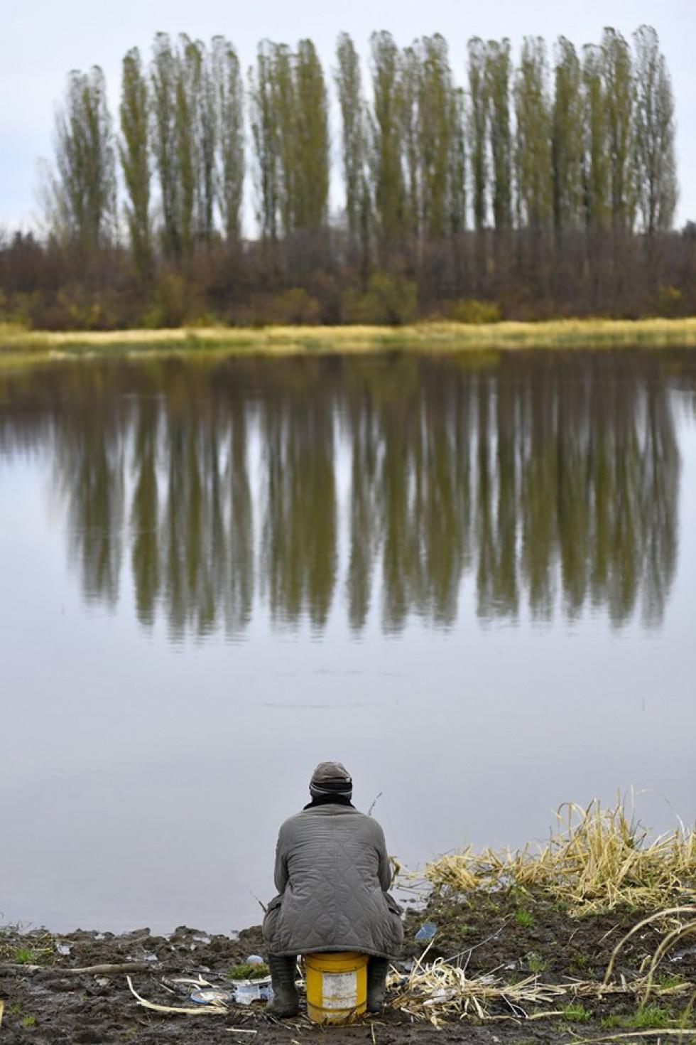 «Гнідавське болото» на світлинах Павла Березюка