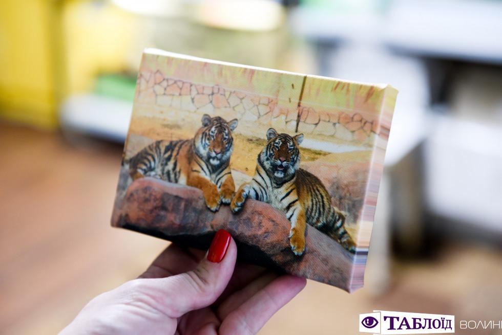 Перші спроби друкованих фото мешканців зоопарку