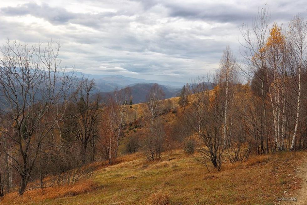 Волинський фотограф показав суворі осінні Карпати. ФОТО