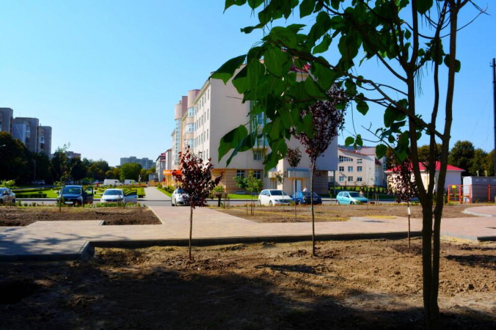 Сквер біля Волинського перинатального центру