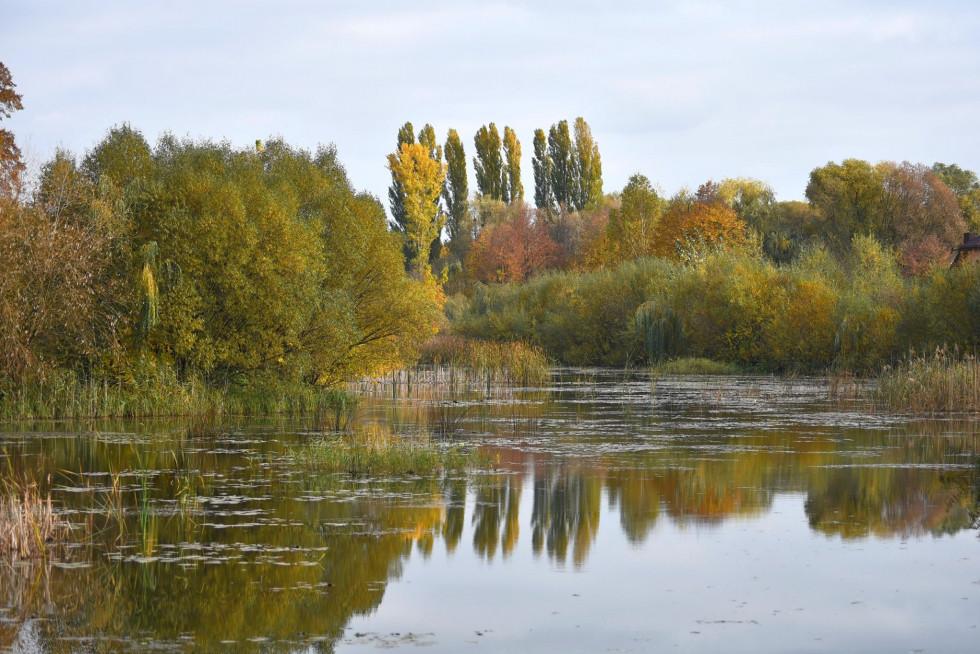 Атмосферна осінь на Теремнівських ставках