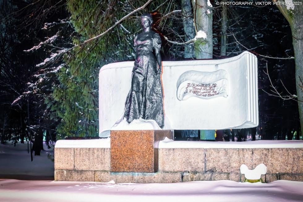 Зимовий парк Віктора Петрука