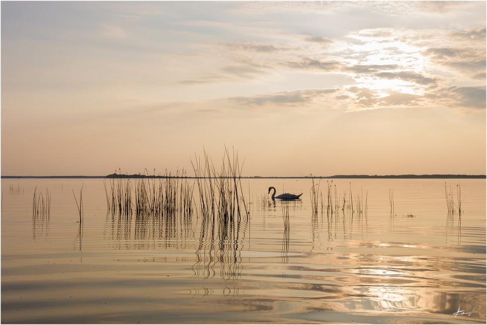 Світязь на фото Романа Каліщука