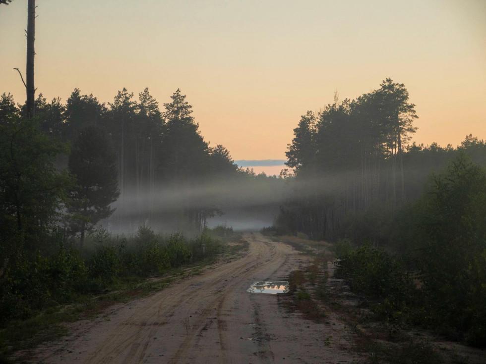 Фото Олега Леоновича